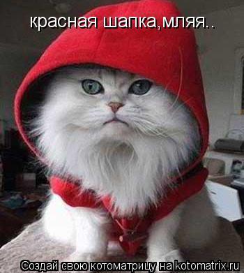 Котоматрица: красная шапка,мляя..