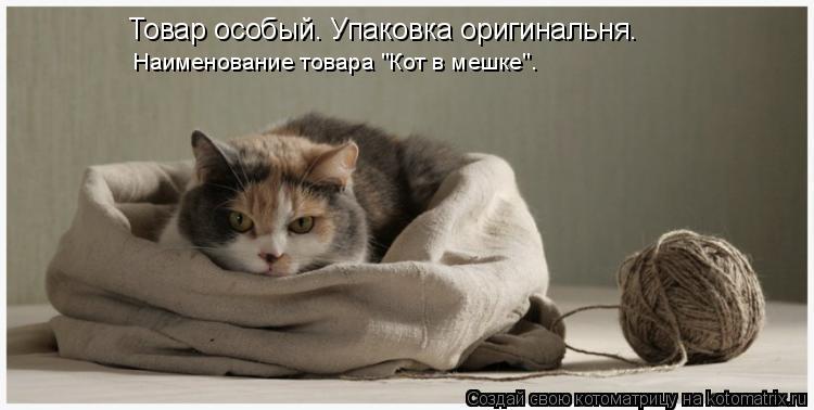 """Котоматрица: Товар особый. Упаковка оригинальня. Наименование товара """"Кот в мешке""""."""