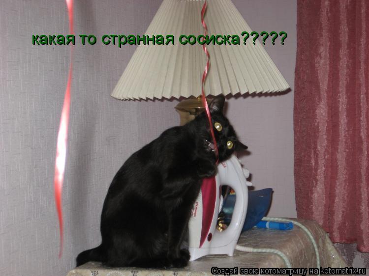 Котоматрица: какая то странная сосиска?????