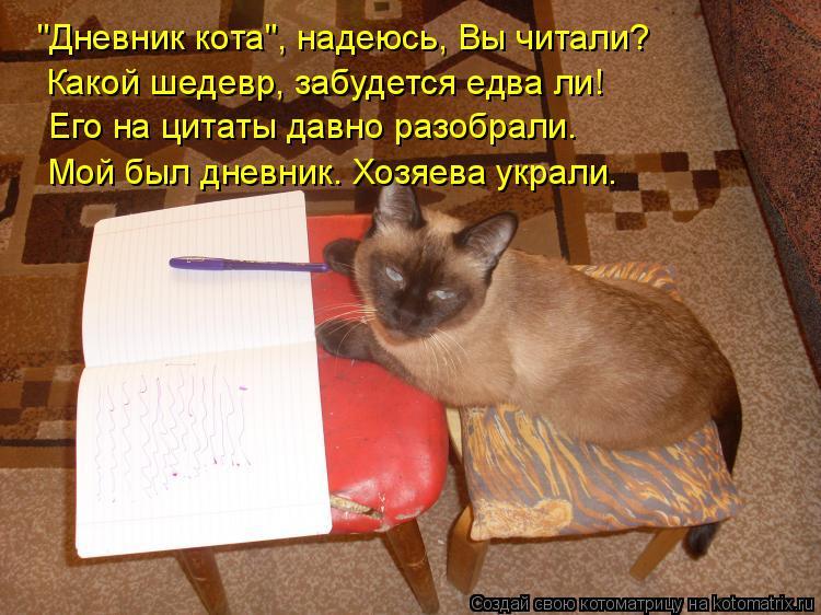"""Котоматрица: """"Дневник кота"""", надеюсь, Вы читали? Какой шедевр, забудется едва ли! Его на цитаты давно разобрали. Мой был дневник. Хозяева украли."""