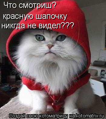 Котоматрица: Что смотриш? красную шапочку никгда не видел???