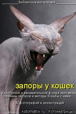 Котоматрица: в доступной и занимательной форме изложены  причины запоров и методы борьбы с ними 130 фотографий и иллюстраций запоры у кошек _________библиоте