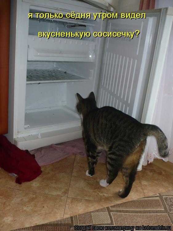 Котоматрица: я только сёдня утром видел  вкусненькую сосисечку?