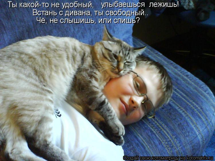 Котоматрица: улыбаешься  лежишь! Ты какой-то не удобный,  Встань с дивана, ты свободный.. Чё, не слышишь, или спишь?