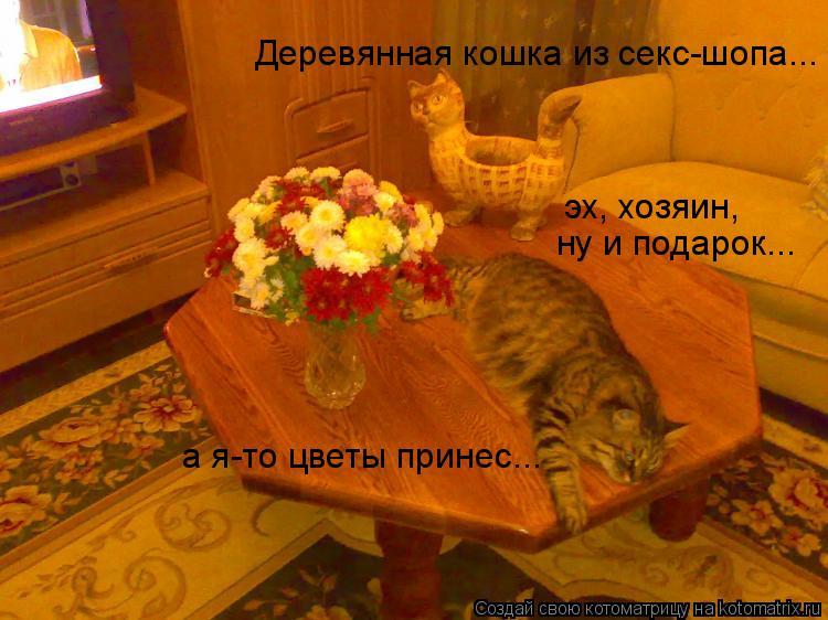 Котоматрица: Деревянная кошка из секс-шопа... а я-то цветы принес... эх, хозяин, ну и подарок...