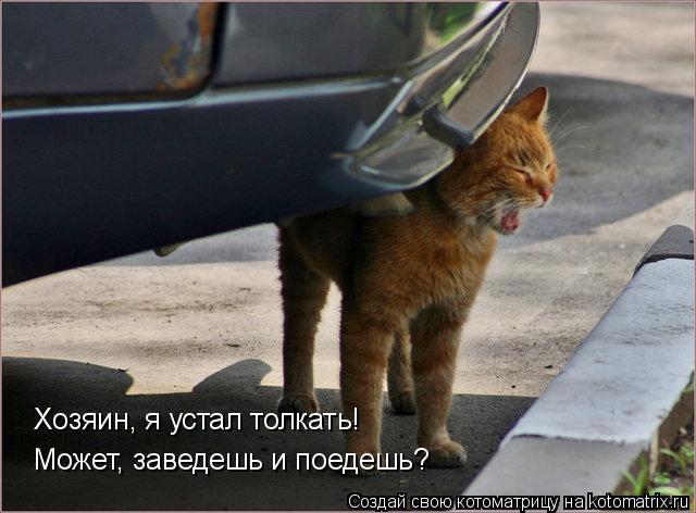 Котоматрица: Хозяин, я устал толкать! Может, заведешь и поедешь?