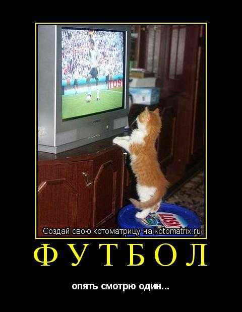 Котоматрица: футбол опять смотрю один...