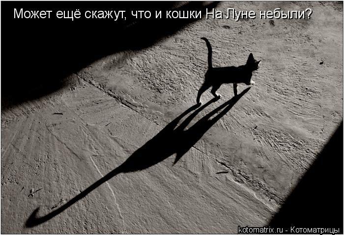 Котоматрица: Может ещё скажут, что и кошки На Луне небыли?