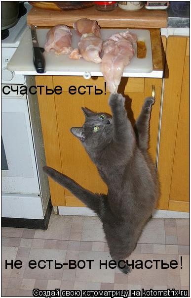 Котоматрица: cчастье есть! не есть-вот несчастье!