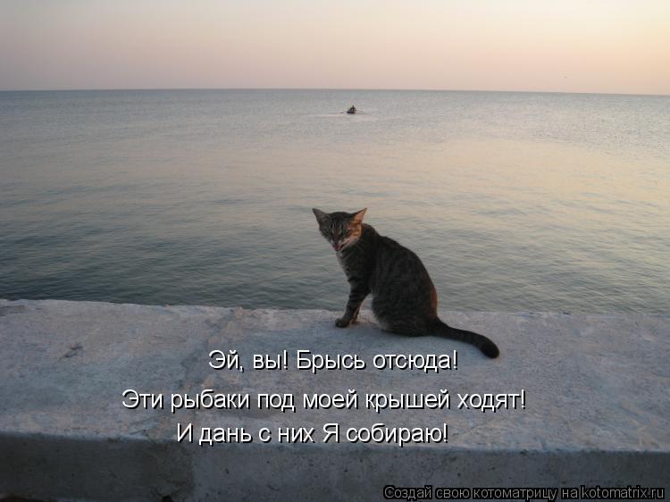 Котоматрица: Эй, вы! Брысь отсюда! Эти рыбаки под моей крышей ходят! И дань с них Я собираю!