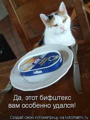 Котоматрица: Да, этот бифштекс вам особенно удался!