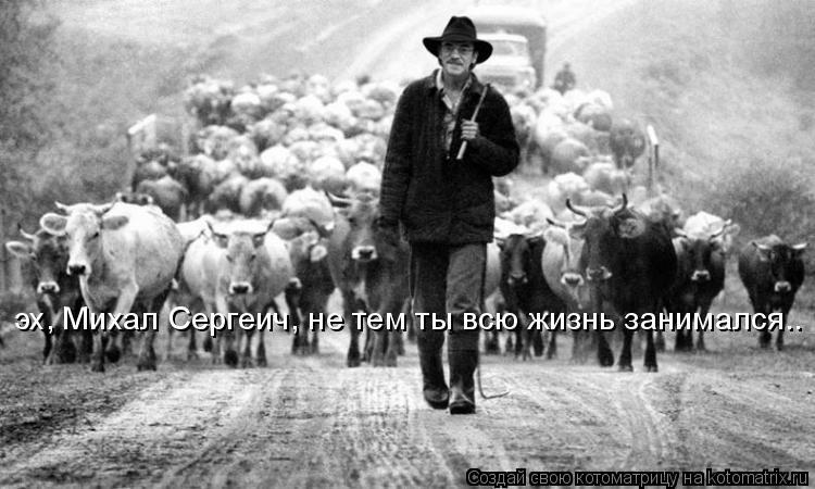 Котоматрица: эх, Михал Сергеич, не тем ты всю жизнь занимался..