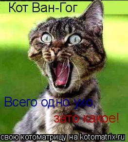 Котоматрица: Кот Ван-Гог Всего одно ухо, зато какое!
