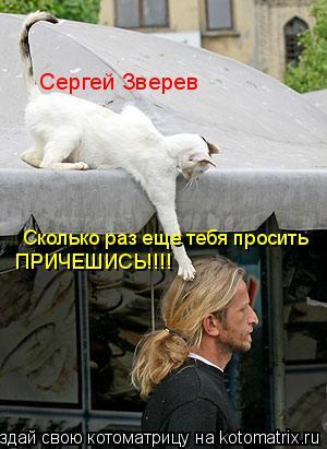 Котоматрица: Сергей Зверев Сколько раз еще тебя просить  ПРИЧЕШИСЬ!!!!