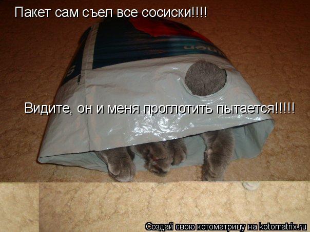 Котоматрица: Пакет сам съел все сосиски!!!! Видите, он и меня проглотить пытается!!!!!