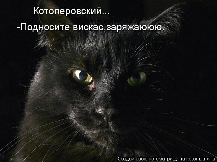 Котоматрица: Котоперовский... -Подносите вискас,заряжаююю.