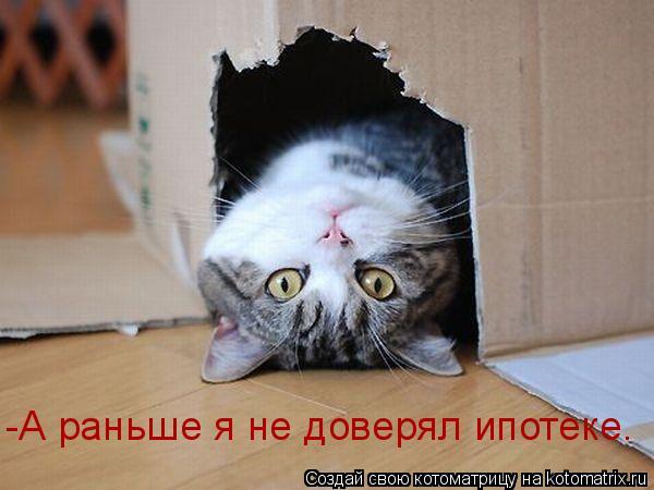 Котоматрица: -А раньше я не доверял ипотеке.