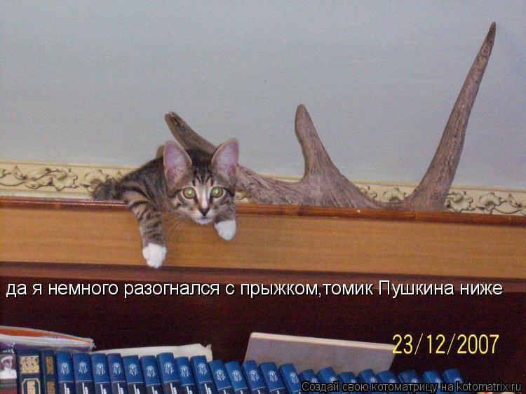 Котоматрица: да я немного разогнался с прыжком,томик Пушкина ниже