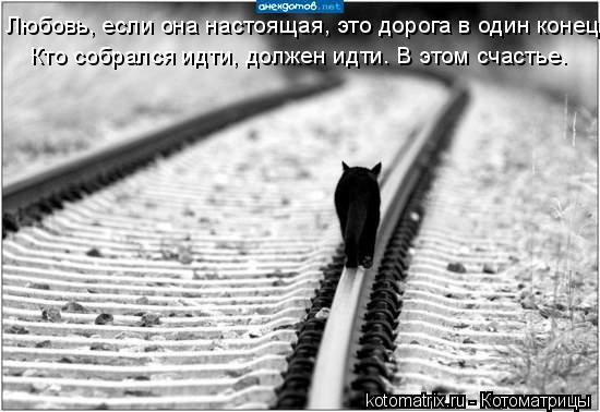 Котоматрица: Любовь, если она настоящая, это дорога в один конец. Кто собрался идти, должен идти… В этом счастье.