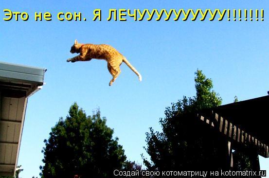 Котоматрица: Это не сон. Я ЛЕЧУУУУУУУУУУ!!!!!!!