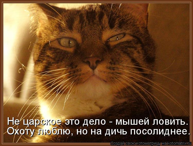 Котоматрица: Не царское это дело - мышей ловить. Охоту люблю, но на дичь посолиднее.