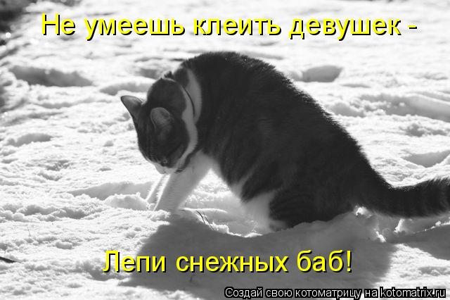 Котоматрица: Не умеешь клеить девушек -  Лепи снежных баб!