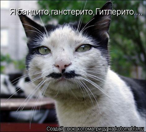 Котоматрица: Я бандито,ганстерито,Гитлерито....