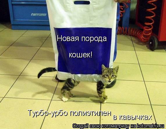 Котоматрица: Новая порода кошек! Турбо-урбо полиэтилен Турбо-урбо полиэтилен в кавычках