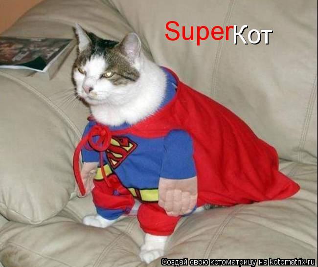 Котоматрица: Super Кот