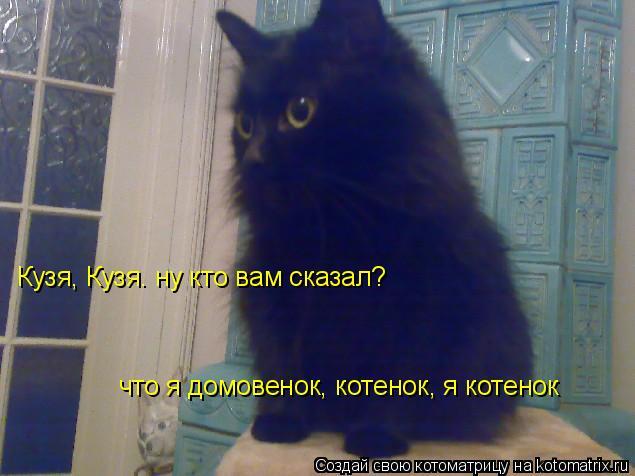 Котоматрица: Кузя, Кузя. ну кто вам сказал? что я домовенок, котенок, я котенок