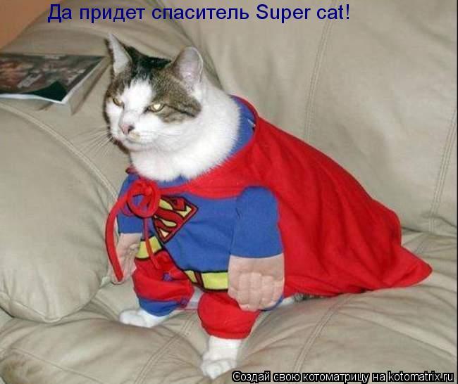 Котоматрица: Да придет спаситель Super cat!