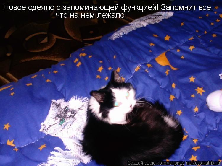 Котоматрица: Новое одеяло с запоминающей функцией! Запомнит все,  что на нем лежало!