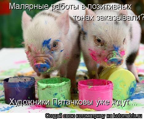 Котоматрица: Малярные работы в позитивных тонах заказывали? Художники Пятачковы уже ждут....