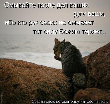 Котоматрица: Омывайте после дел ваших  руки ваши,  ибо кто рук своих не омывает,  тот силу Божию теряет...
