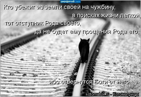 Котоматрица: Кто убежит из земли своей на чужбину,  в поисках жизни легкой,  тот отступник Рода своего,  да не будет ему прощения Рода его,  ибо отвернутся