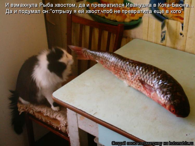 """Котоматрица: И взмахнула Рыба хвостом, да и превратился Иванушка в Кота-Баюна... Да и подумал он:""""отгрызу я ей хвост,чтоб не превратила ещё в кого"""""""
