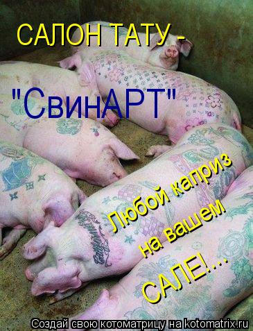 "Котоматрица: Любой каприз САЛЕ!... САЛОН ТАТУ -  ""СвинАРТ"" на вашем"
