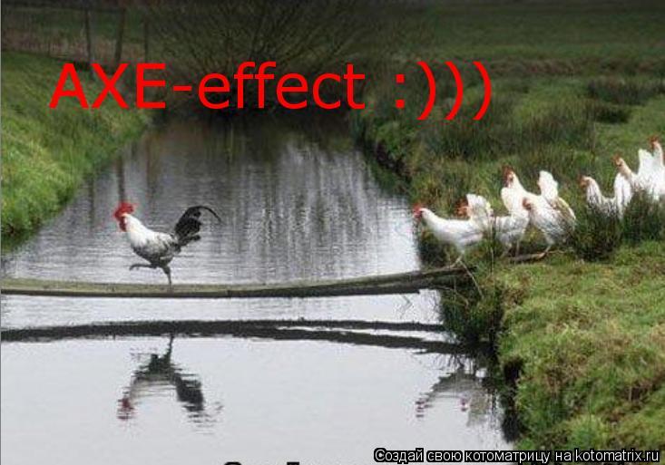 Котоматрица: AXE-effect :)))