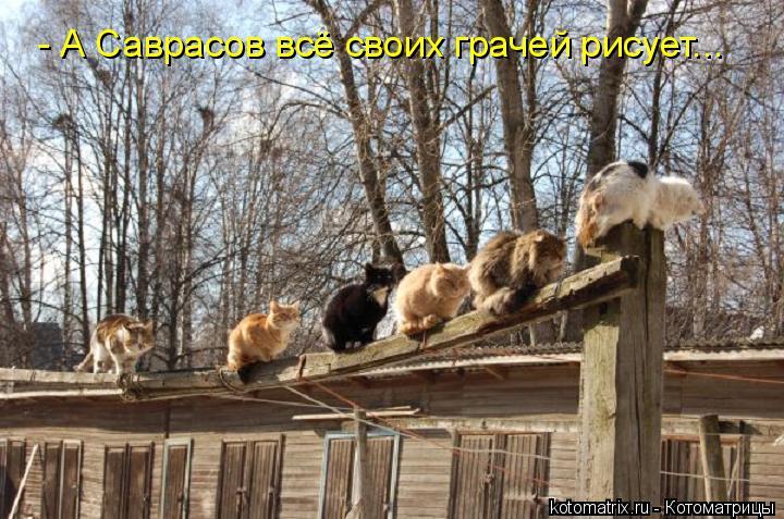 Котоматрица: - А Саврасов всё своих грачей рисует...