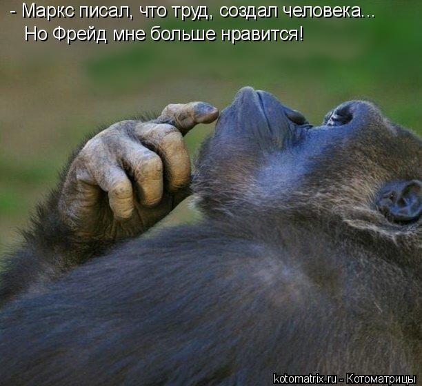 Котоматрица: - Маркс писал, что труд, создал человека... Но Фрейд мне больше нравится!