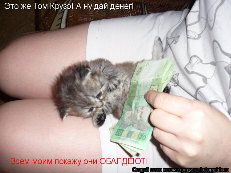 Котоматрица: Это же Том Крузо! А ну дай денег! Всем моим покажу они ОБАЛДЕЮТ!