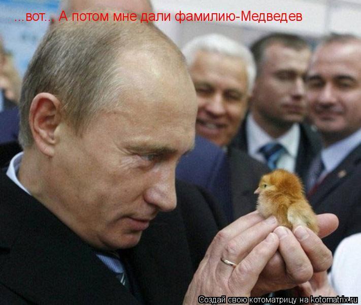 Котоматрица: ...вот... А потом мне дали фамилию-Медведев