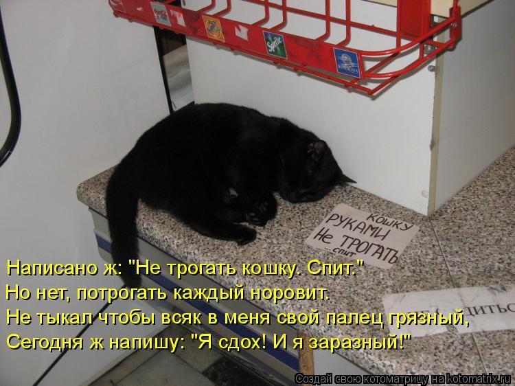 """Котоматрица: Написано ж: """"Не трогать кошку. Спит."""" Но нет, потрогать каждый норовит. Не тыкал чтобы всяк в меня свой палец грязный, Сегодня ж напишу: """"Я сдох!"""