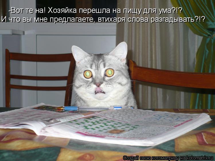 Котоматрица: -Вот те на! Хозяйка перешла на пищу для ума?!? И что вы мне предлагаете, втихаря слова разгадывать?!?