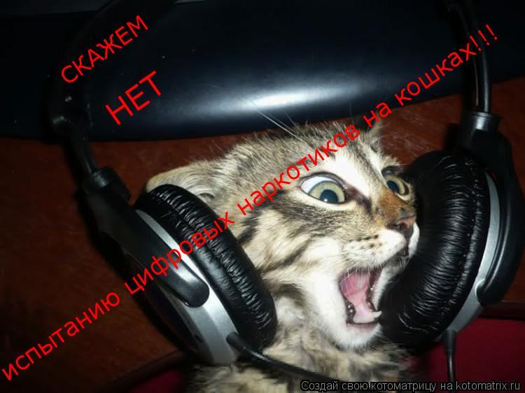 Котоматрица: СКАЖЕМ НЕТ испытанию цифровых наркотиков на кошках!!!