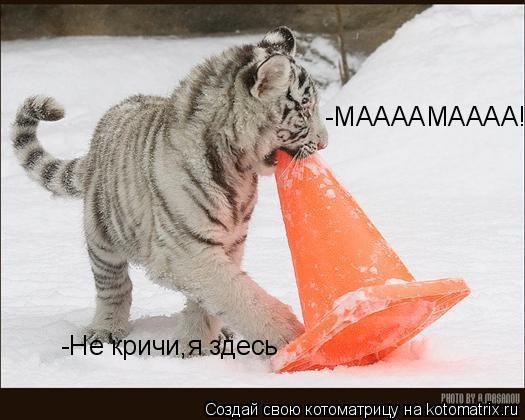 Котоматрица: -МААААМАААА!!! -Не кричи,я здесь