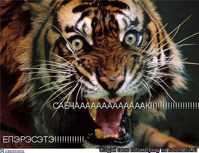 Котоматрица: ЕПЭРЭСЭТЭ!!!!!!!!!!!! САБЧАААААААААААААК!!!!!!!!!!!!!!!!!!!!!