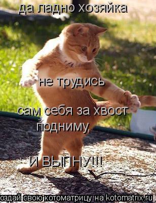 Котоматрица: да ладно хозяйка не трудись сам себя за хвост подниму, И ВЫПНУ!!!