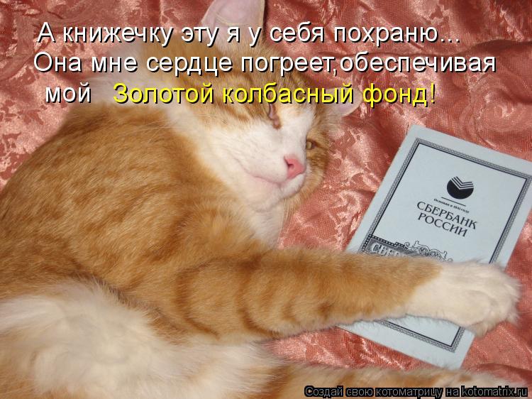 Котоматрица: А книжечку эту я у себя похраню... Она мне сердце погреет,обеспечивая мой Золотой колбасный фонд!