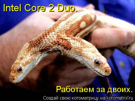Котоматрица: Intel Core 2 Duo. Работаем за двоих.